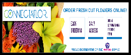Connectaflor Online Ordering System